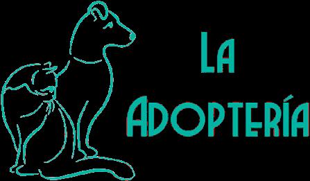 La Adoptería