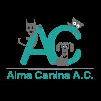 Alma Canina Xalapa
